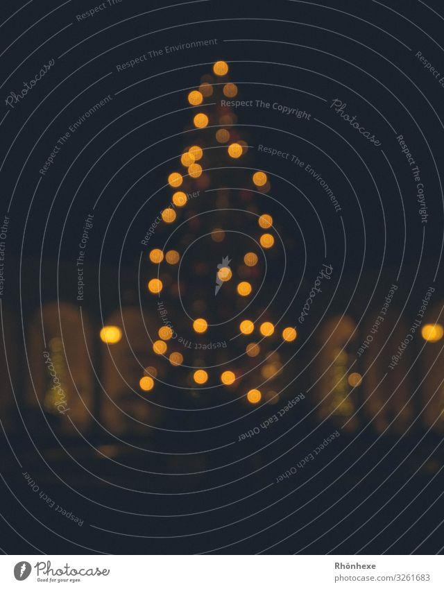 Christmastreelights Winter Baum gold schwarz Frieden Weihnachten & Advent Weihnachtsbaum Lichterscheinung Lichterkette modern Außenaufnahme Religion & Glaube