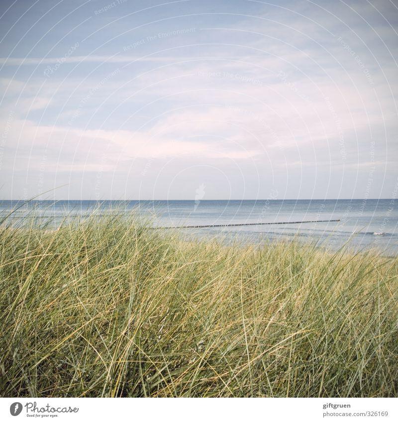 blau-grün Umwelt Natur Landschaft Pflanze Urelemente Wasser Himmel Wolken Schönes Wetter Gras Grünpflanze Wellen Küste Strand Ostsee Meer natürlich Düne