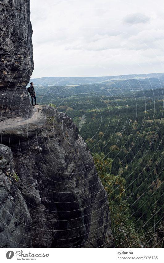 Am Abgrund Mensch Natur Ferien & Urlaub & Reisen Jugendliche Erholung Landschaft ruhig Junger Mann Ferne Wald Umwelt Berge u. Gebirge Leben Wege & Pfade