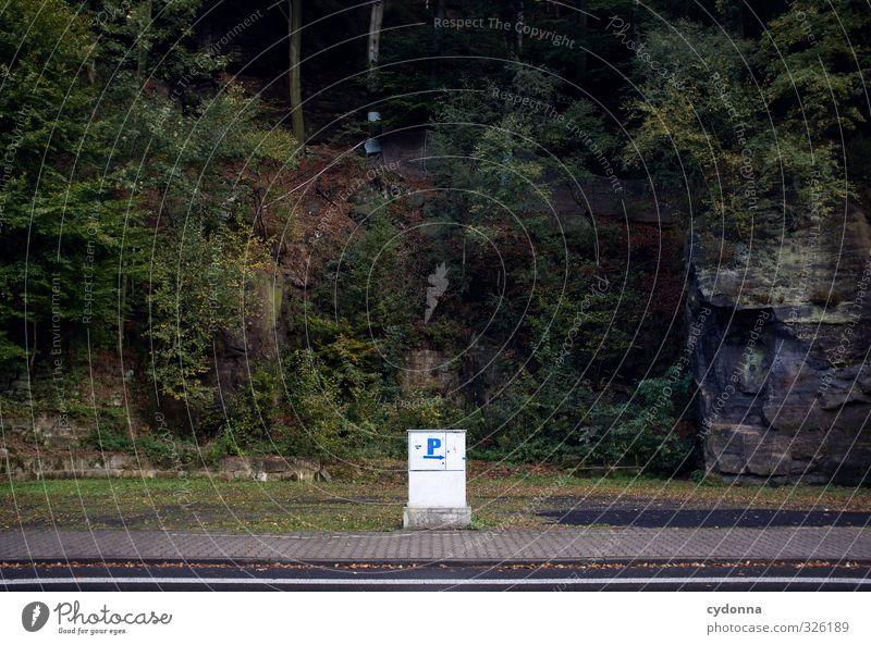 P Umwelt Natur Landschaft Baum Wald Felsen Berge u. Gebirge Straße Wege & Pfade Schriftzeichen Schilder & Markierungen ästhetisch Einsamkeit entdecken Freiheit