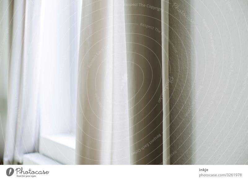 Vorhang am Morgen Häusliches Leben Wohnung Raum Fenster Gardine Menschenleer authentisch hell Sauberkeit durchleuchtet beige Farbfoto Gedeckte Farben