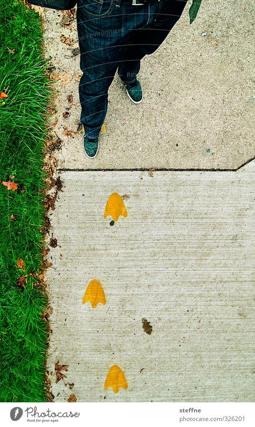 Ducky Boy Mensch Jugendliche Junger Mann Wiese lustig Wege & Pfade Beine Fuß maskulin niedlich USA Ente nerdig Oregon watscheln Entengang