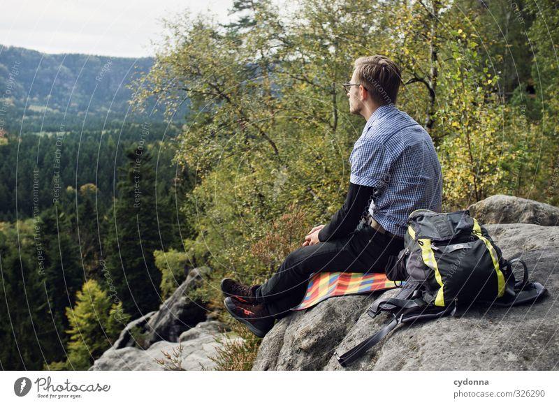 Aussicht genießen Mensch Natur Ferien & Urlaub & Reisen Jugendliche Sommer Erholung Landschaft ruhig 18-30 Jahre Junger Mann Ferne Wald Umwelt Erwachsene