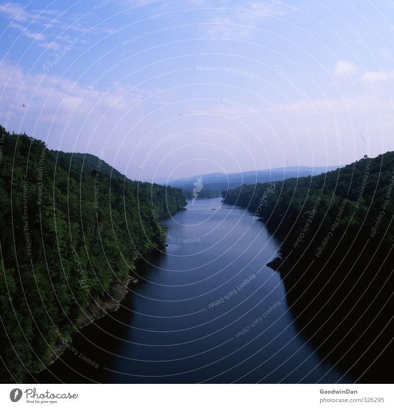New England. Natur schön Pflanze Baum Wald Umwelt See Stimmung Park Wetter elegant groß Fluss fantastisch Unendlichkeit reich