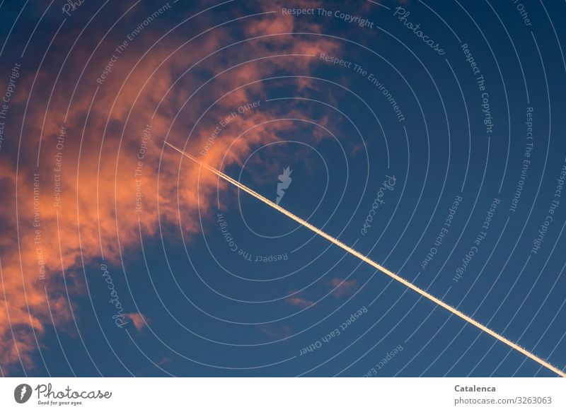 Flugverkehr Umwelt nur Himmel Gewitterwolken Klimawandel Schönes Wetter Luftverkehr Passagierflugzeug Kondensstreifen berühren Bewegung Ferne Unendlichkeit blau