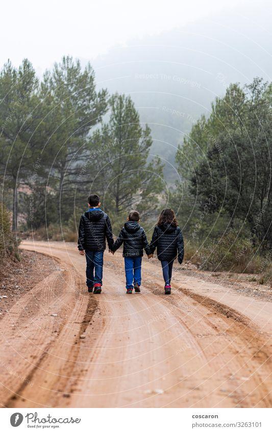 Kind Mensch Ferien & Urlaub & Reisen Natur Jugendliche grün Landschaft Baum Wolken Blatt Wald Winter Ferne Berge u. Gebirge Lifestyle Herbst