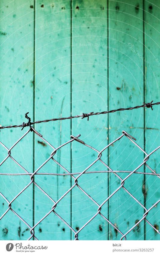 ! Trash ! Frei ins neue Jahr Wand Mauer Freiheit Fassade frei bedrohlich Netzwerk Zaun Hütte türkis Grenze Kontrolle gefangen protestieren Fischerdorf