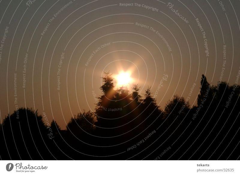 SunStar Sonnenuntergang schwarz Gegenlicht Stern (Symbol)