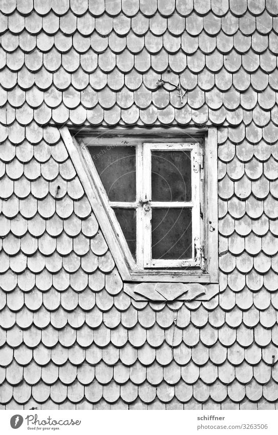 Verloren | die Ecke Haus Dach außergewöhnlich einzigartig grau Autofenster Fensterscheibe Fensterkreuz Fensterfront Fensterrahmen Neigung ausgeschnitten