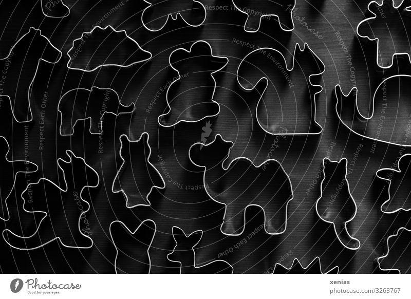 tierische Ausstechformen auf Holzuntergrund Keks Plätzchen ausstechen Weihnachten & Advent Tier Katze Pferd Maus Igel Eulenvögel Eichhörnchen Drache Kamel