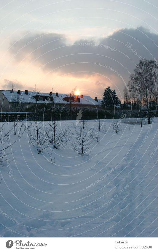 Winterbild Sonne Schnee