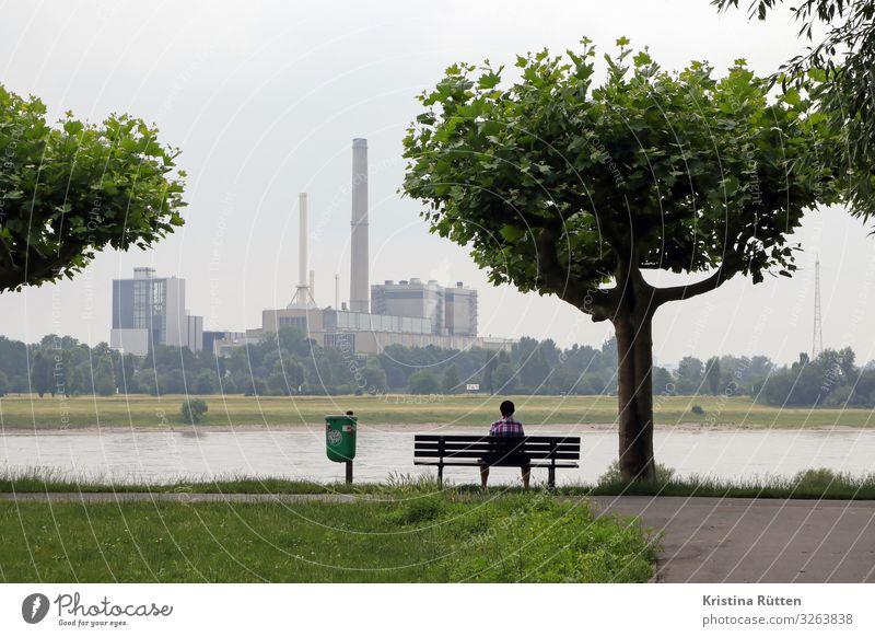 kraftwerk Fabrik Industrie Energiewirtschaft Mensch Mann Erwachsene Umwelt Natur Landschaft Baum Flussufer Düsseldorf Stadtrand Gebäude Schornstein sitzen
