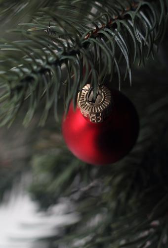 Mal abhängen Lifestyle elegant Stil Feste & Feiern Weihnachten & Advent Silvester u. Neujahr Fichte Tanne Tannenzweig Zeichen Christbaumkugel glänzend leuchten