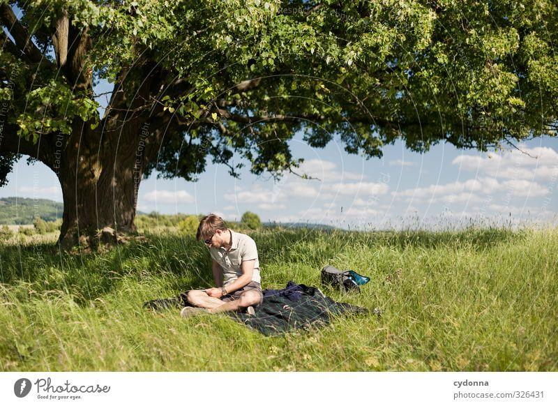 Am richtigen Ort Mensch Natur Jugendliche Ferien & Urlaub & Reisen Sommer Baum Erholung Landschaft ruhig Erwachsene Junger Mann Wiese Leben 18-30 Jahre Frühling