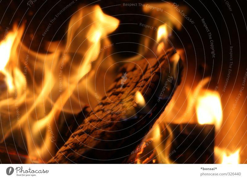 feuer Wohlgefühl Erholung Kamin Feuer Winter Holz glänzend leuchten kuschlig Wärme gemütlich Rascheln brennen Flamme Kaminofen Farbfoto Innenaufnahme
