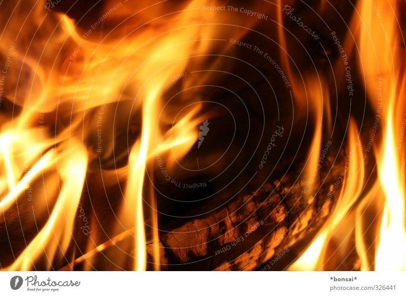 hot! Feuer Flamme Holz glänzend leuchten Aggression bedrohlich heiß kuschlig natürlich Wärme Kraft Warmherzigkeit Energie Natur gemütlich Rascheln Brennholz