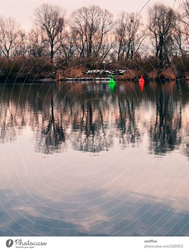 Heulbojen (Winter) Wasser Baum Landschaft Schnee Küste trist Flussufer Boje