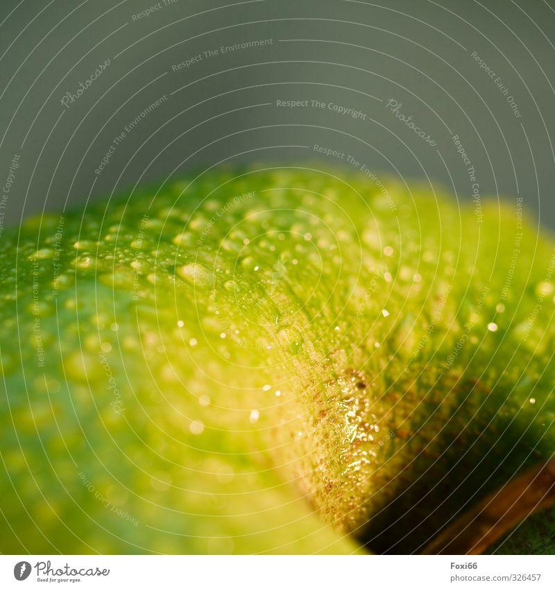 Frischobst grün gelb Bewegung Gesunde Ernährung Essen natürlich Gesundheit Lebensmittel Frucht Wassertropfen süß rein Apfel Wohlgefühl lecker Stengel
