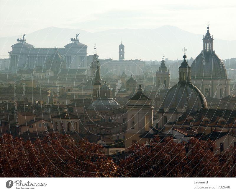 Kuppeln von Rom Baum Stadt Haus Herbst Berge u. Gebirge Religion & Glaube Nebel Rücken Europa Dach Italien Denkmal Skulptur Schulunterricht Bildung