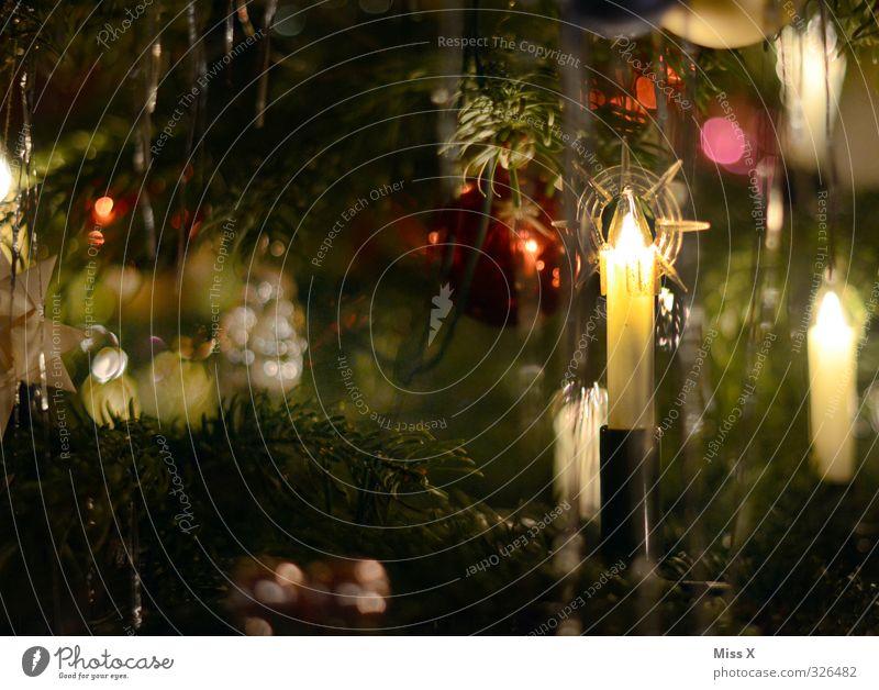 Weihnachtsdeko Feste & Feiern Weihnachten & Advent leuchten glänzend Kerze Kerzenschein Weihnachtsbaum Weihnachtsdekoration Weihnachtsbeleuchtung Lametta