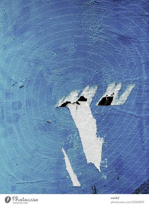 Heute blau und morgen blau maskulin Gesicht Auge Nase Mund Papierfetzen Rest Litfaßsäule lustig schwarz weiß Alkoholisiert Farbfoto Außenaufnahme Detailaufnahme