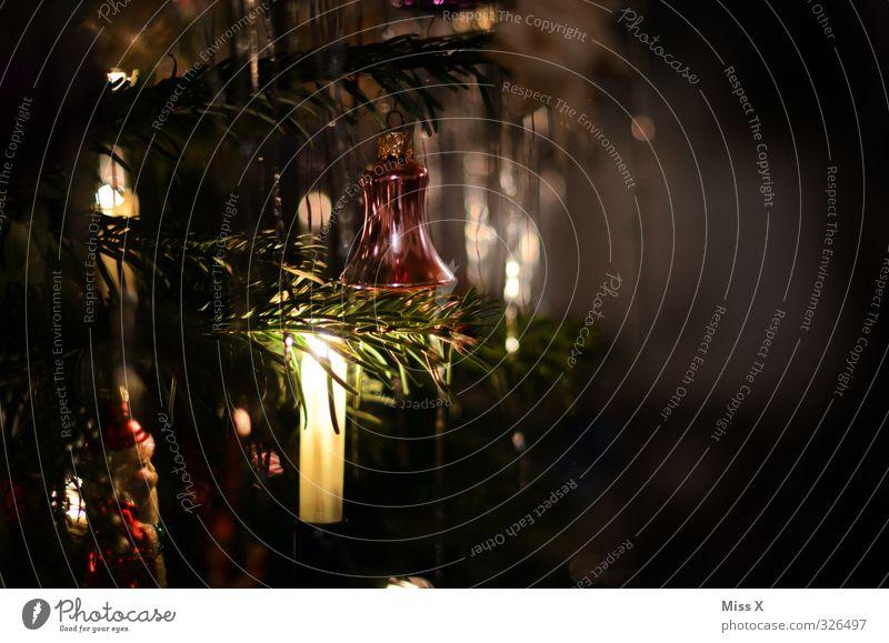 Weihnachtsdeko Weihnachten & Advent dunkel leuchten Kerze Weihnachtsbaum Weihnachtsdekoration Kerzenschein Tannenzweig Lametta Weihnachtsbeleuchtung