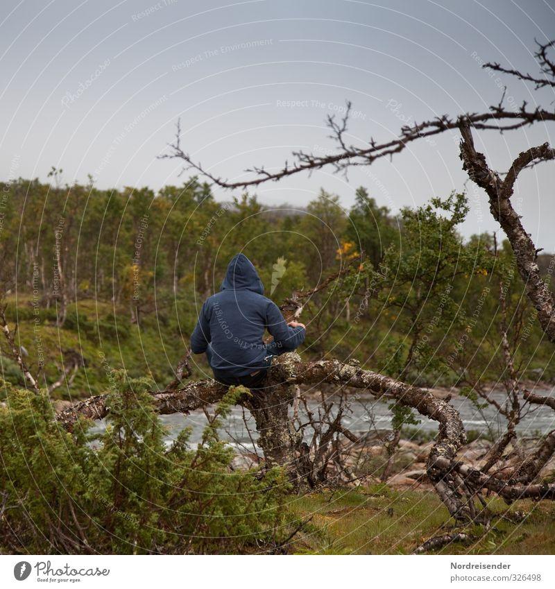 Foto-ID: 326498 Mensch Natur Mann Baum Erholung Einsamkeit Landschaft ruhig Wald Erwachsene dunkel Leben Wege & Pfade Denken Wetter sitzen