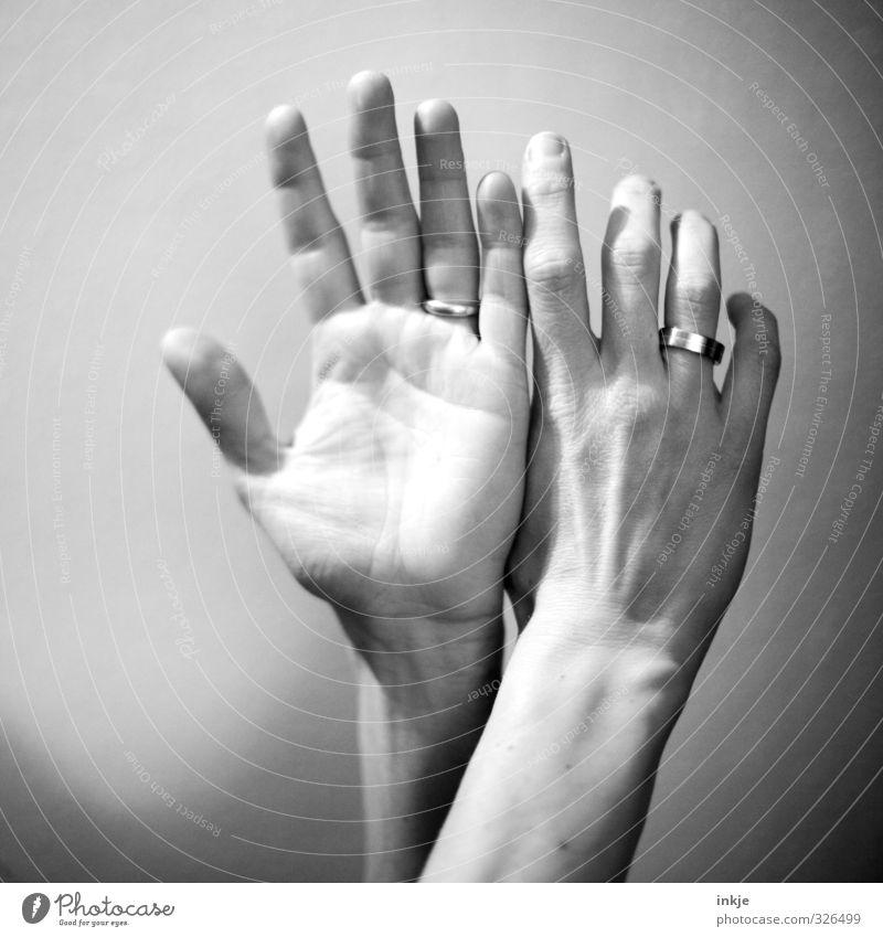 was andere Fotografen befremdlich fanden: Motiv Mensch Hand feminin Gefühle außergewöhnlich Kommunizieren Finger Zeichen Ring machen gestikulieren Gebärdensprache zusammengehörig Ehering Frauenhand