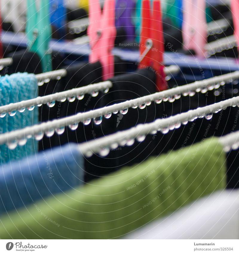 Vollwäsche natürlich Wetter frisch Häusliches Leben nass Wassertropfen Reinigen Sauberkeit rund Tropfen Regenwasser rein Wäsche waschen hängen trocknen