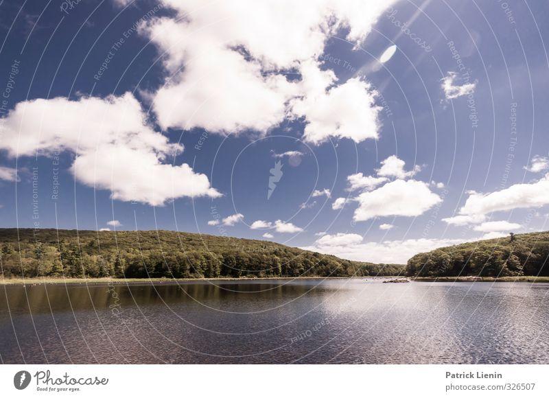 One Sunday Morning Umwelt Natur Landschaft Pflanze Urelemente Luft Wasser Himmel Wolken Sonne Sommer Baum Wald Küste Seeufer schön Abenteuer Energie Freiheit