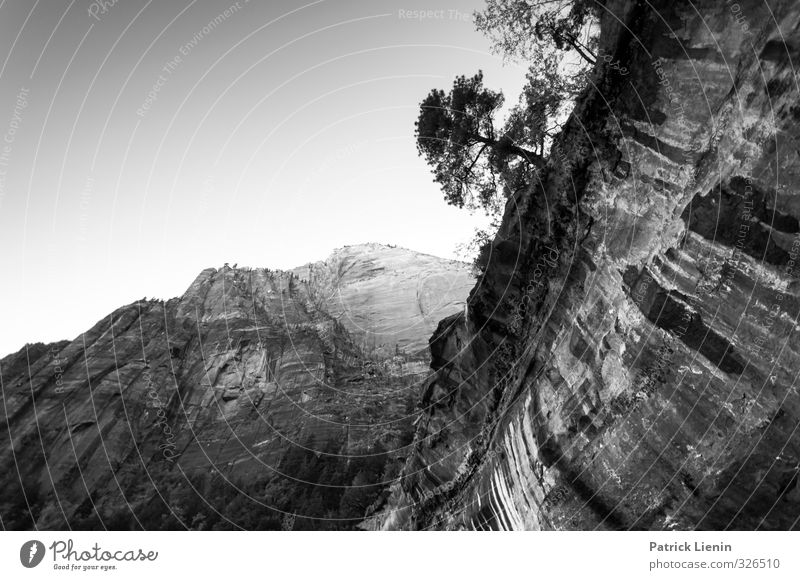 Schieflage Himmel Natur Ferien & Urlaub & Reisen Sommer Pflanze Baum Einsamkeit Landschaft Umwelt Berge u. Gebirge Herbst Felsen Luft Wetter Zufriedenheit Klima