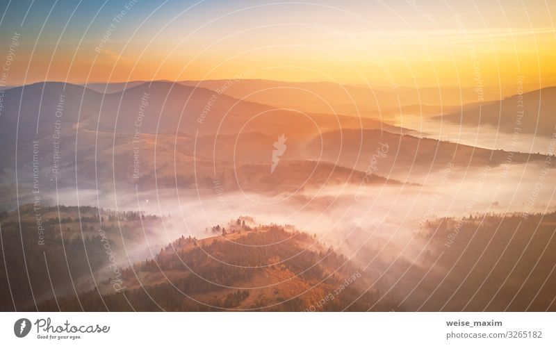 Sonnenaufgang über dem bergigen Nebeltal. Nebliges Holz am Morgen schön Ferien & Urlaub & Reisen Sommer Berge u. Gebirge Umwelt Natur Landschaft Erde Luft