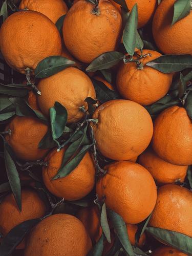 leckeres Orangenfruchtfutter, leckeres Obst orange Frucht Lebensmittel Gesunde Ernährung frisch Zitrusfrüchte Vitamin geschmackvoll Diät Marktplatz kaufen süß