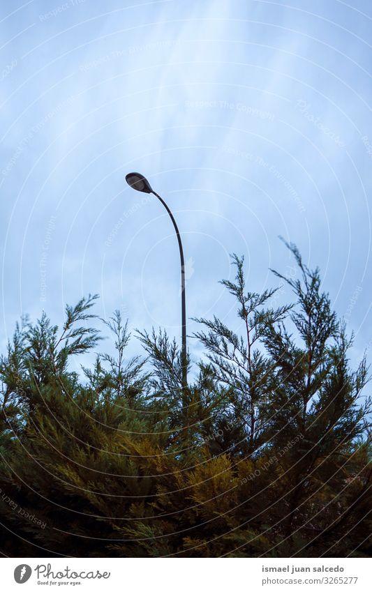 Straßenlaterne und blauer Himmel Peitschenlaterne Straßenleuchte Laternenpfahl Lampe Illumination Beleuchtungseinrichtungen Großstadt Metall Objektfotografie