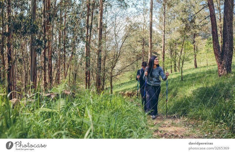 Ein paar Wanderer beim Trekking Lifestyle Ferien & Urlaub & Reisen Ausflug Abenteuer Berge u. Gebirge wandern Sport Klettern Bergsteigen Mensch Frau Erwachsene