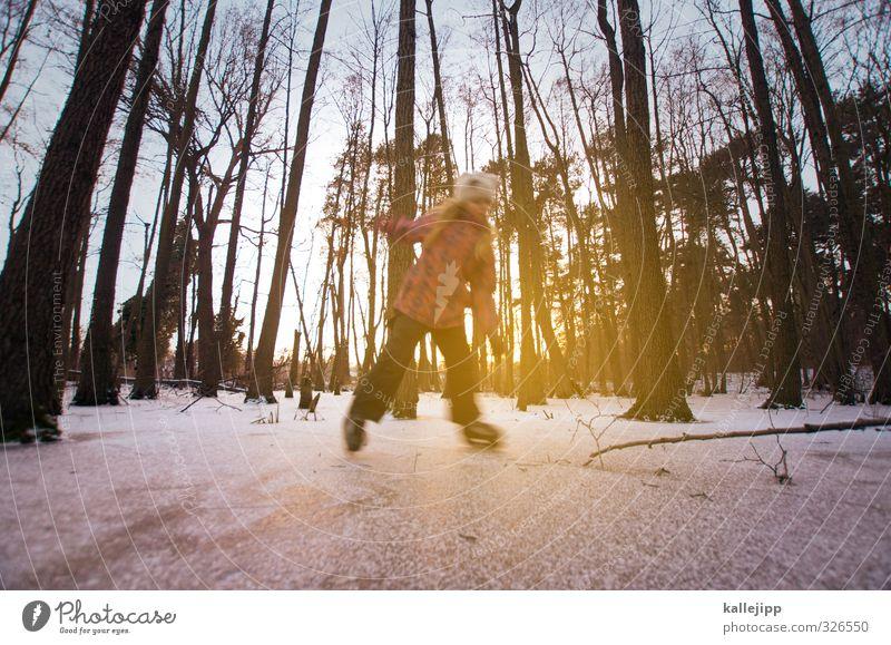 abkühlung Mensch Kind Baum Freude Mädchen Winter Wald Leben feminin Schnee Sport Spielen Freizeit & Hobby Körper Kindheit Ausflug