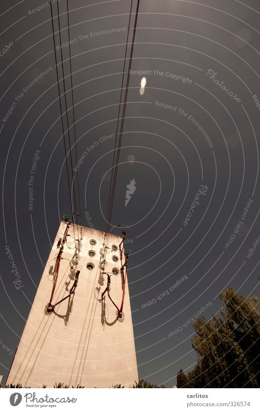 Der schiefe Turm von Inca Wolkenloser Himmel Sonnenlicht Schönes Wetter Wärme Baum bedrohlich Elektrizität Kabel Hochspannungsleitung umfallen Neigung