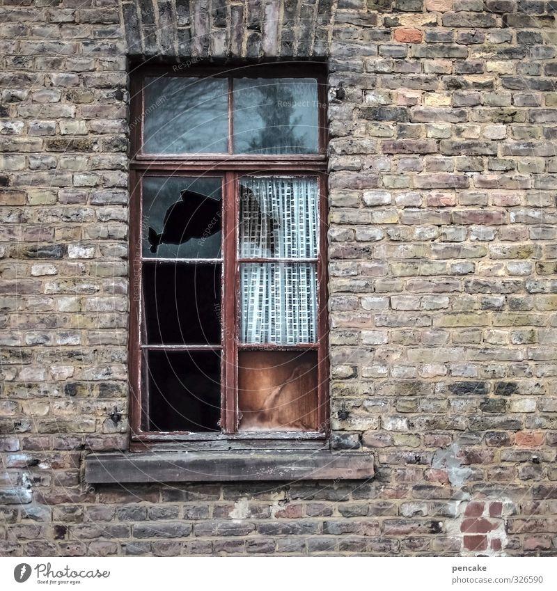 mauer | ausklinkern Kleinstadt Haus Ruine Fenster Stein Zeichen Verfall Vergangenheit Vergänglichkeit Mauer Backstein kaputt Farbfoto Gedeckte Farben
