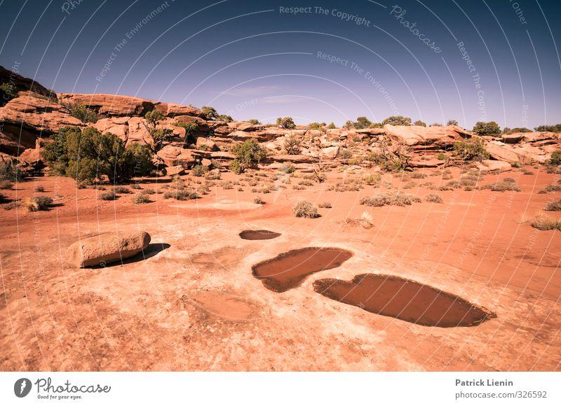 100 Degrees Natur Ferien & Urlaub & Reisen Wasser Pflanze Sommer Sonne Einsamkeit Landschaft Ferne Umwelt Wärme Freiheit Sand Stimmung Luft Wetter