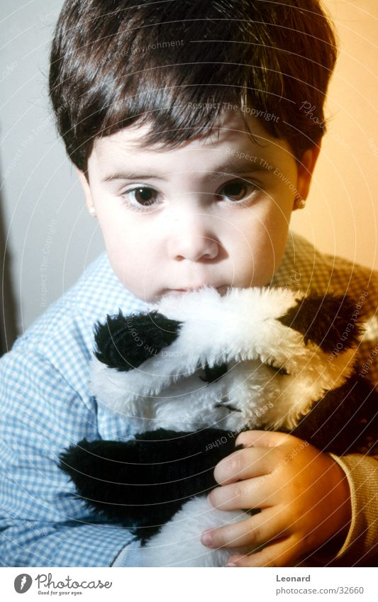 Kind und Bär Mensch Mädchen Auge Farbe Spielzeug Panda