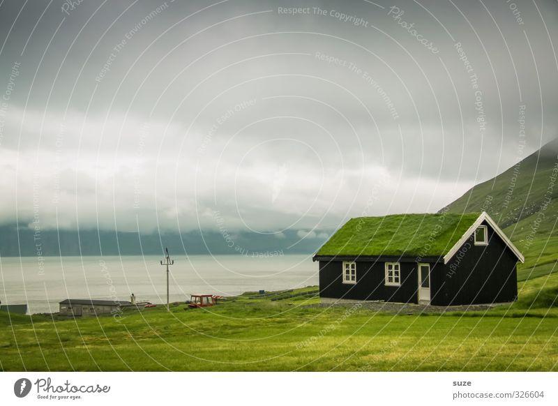 Öko-Hütte Häusliches Leben Wohnung Haus Umwelt Natur Himmel Wolken Gras Wiese Fenster Dach Wachstum kalt lustig nachhaltig natürlich verrückt grün Føroyar