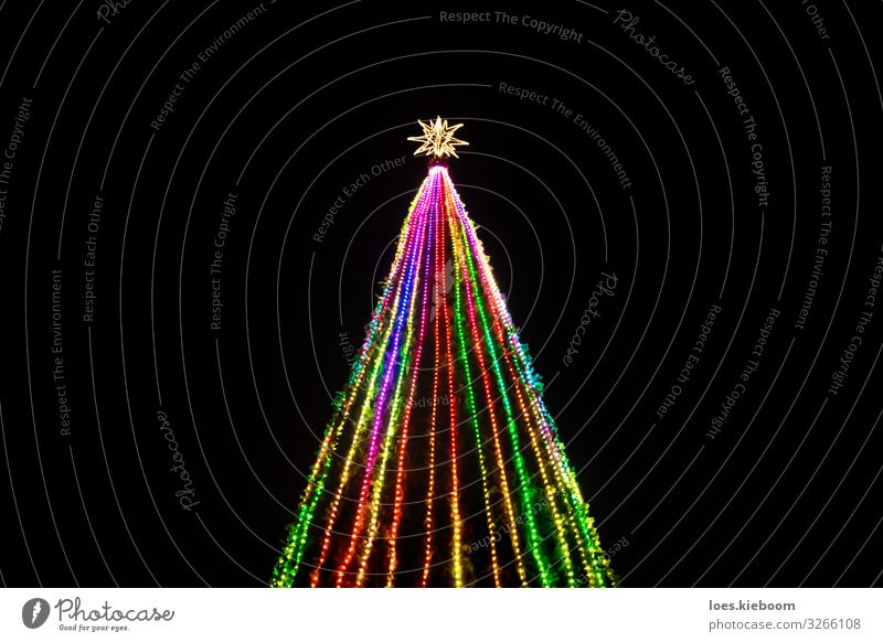 Kitsch Christmas tree Ferien & Urlaub & Reisen Tourismus Ferne Städtereise Weihnachten & Advent Baum Park Krimskrams Ornament Feste & Feiern groß trashig