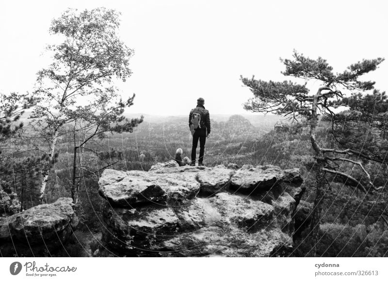 Schau ins Land Mensch Kind Natur Ferien & Urlaub & Reisen Jugendliche Baum Erholung Landschaft ruhig 18-30 Jahre Junger Mann Ferne Wald Umwelt Erwachsene