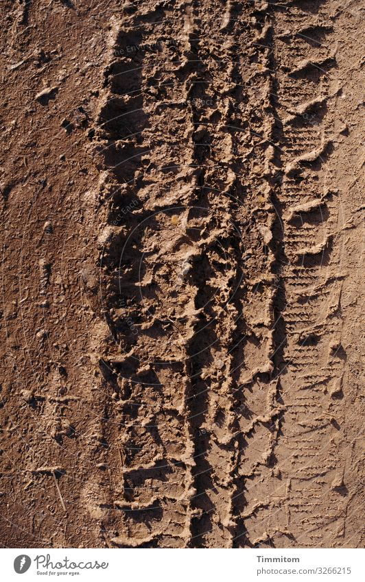 Braun - Reifenspuren auf Feldweg braun Farbe Erde Spuren Profil trocken Abdruck Reifenprofil Menschenleer Wege & Pfade Licht Schatten