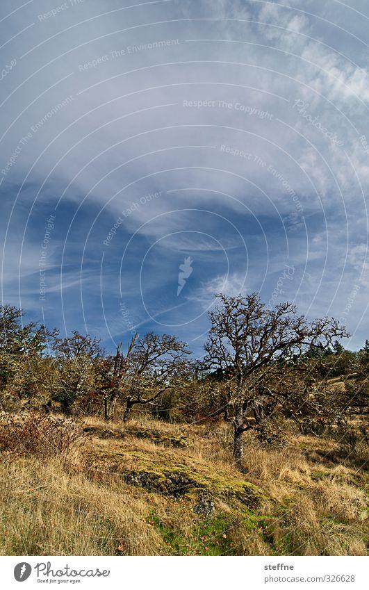 Hiking Himmel Natur Baum Berge u. Gebirge Herbst wandern Schönes Wetter Hügel