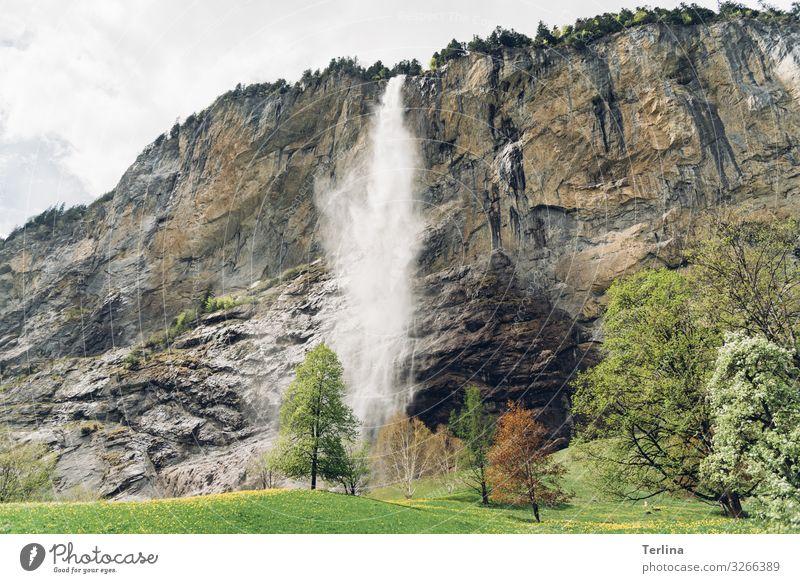 Wasserfall Umwelt Natur Landschaft Pflanze Tier Klima Schönes Wetter Wiese Wald Alpen Berge u. Gebirge atmen Aggression authentisch Ferne Gesundheit