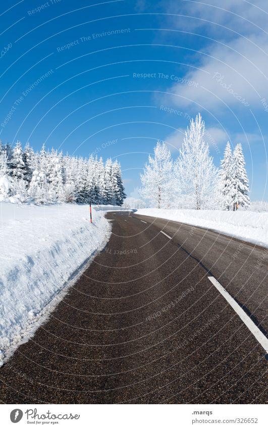 Ausflug Himmel Natur Ferien & Urlaub & Reisen schön Baum Landschaft Winter kalt Umwelt Straße Schnee Wege & Pfade Horizont Stimmung Lifestyle Verkehr