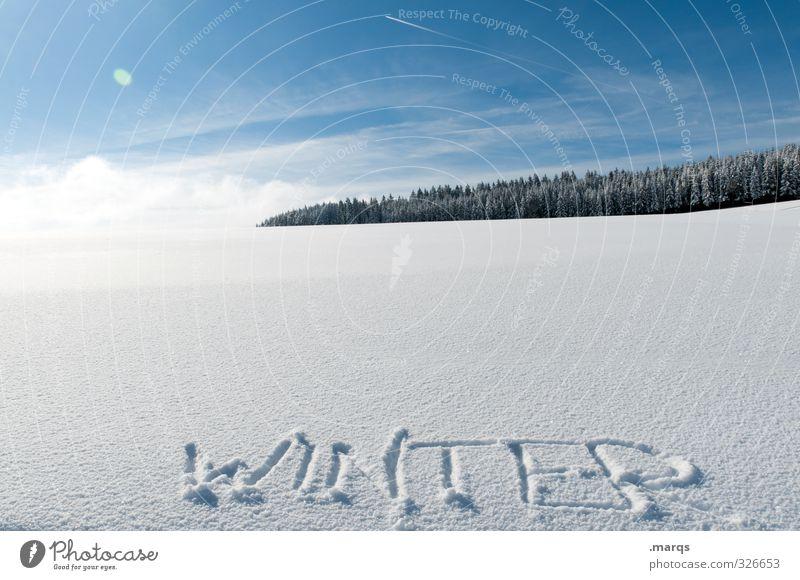 WINTER Ferien & Urlaub & Reisen Tourismus Ausflug Winter Schnee Winterurlaub Umwelt Natur Landschaft Himmel Wolken Horizont Klima Schönes Wetter Wald