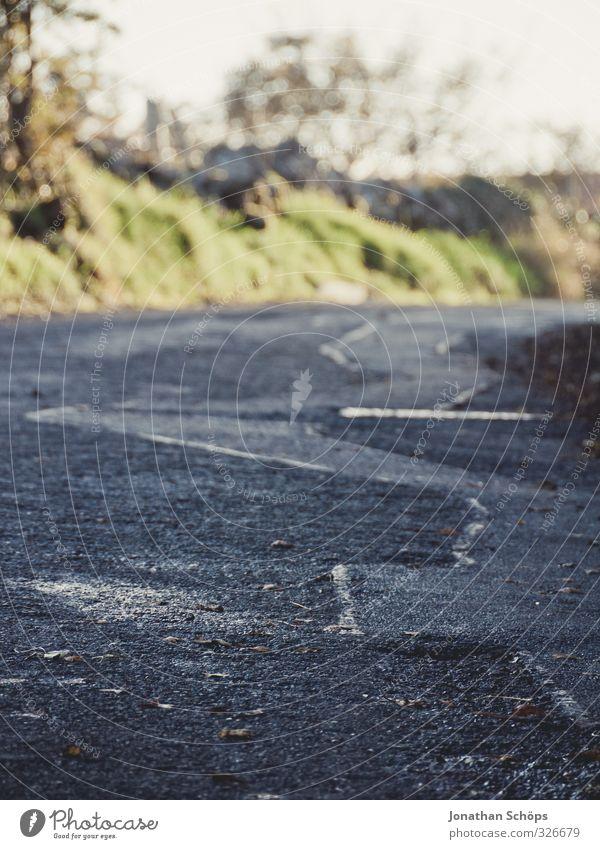 britische Straße I Umwelt Natur Landschaft Großbritannien England Dorf einfach Straßenbelag leer Menschenleer Sonnenstrahlen Reisefotografie Landstraße Asphalt