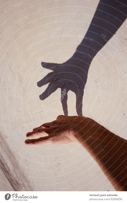 Mann Hand gestikulierend an der Wand Schatten Silhouette Lichterscheinung Sonnenlicht Finger Handfläche Körper Handgelenk Arme Haut Mensch Entwurf